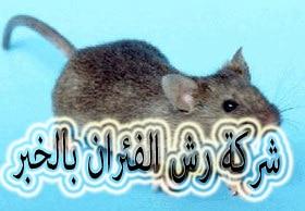 شركة رش الفئران بالخبر